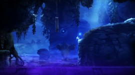 Ori And The Blind Forest Widescreen