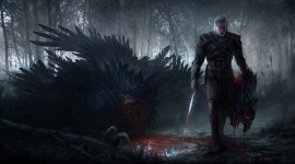 The Witcher 3 Wild Hunt High quality wallpapers