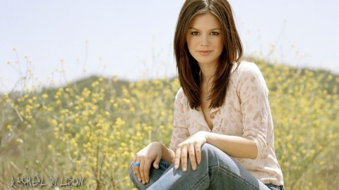 Rachel Bilson wallpapers high quality