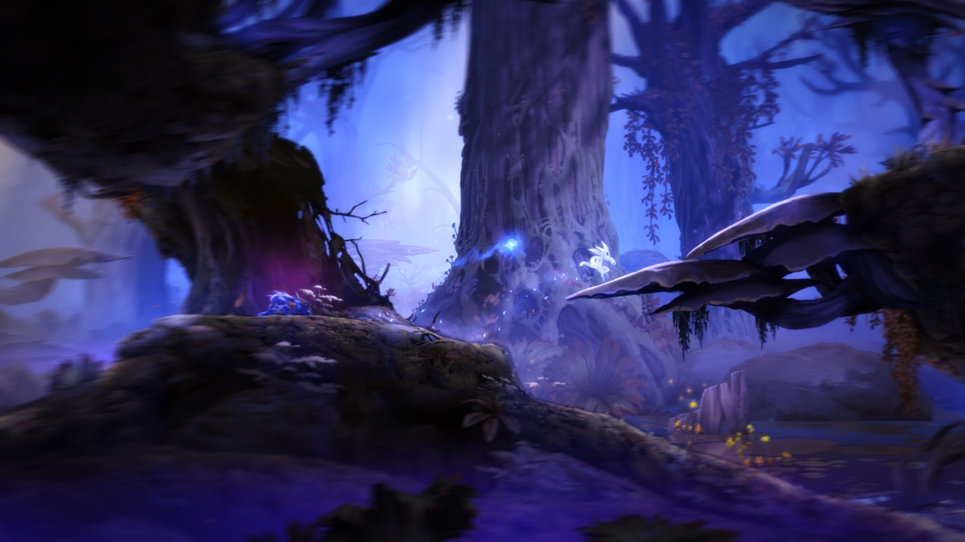 Ori And The Blind Forest Wallpapers High Quality