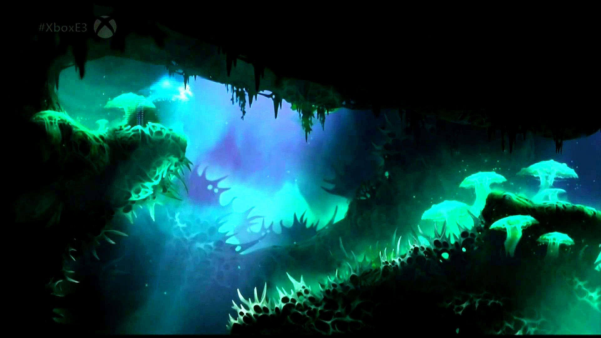 ori and the blind forest wallpapers high quality | download free
