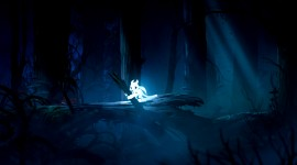Ori And The Blind Forest Pics