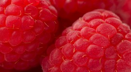 Raspberries High Definition