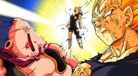 Dragon Ball Z Vegeta Photos
