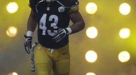 Troy Polamalu Widescreen
