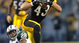 Troy Polamalu High quality wallpapers