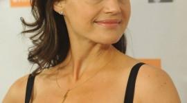 Carla Gugino High Definition