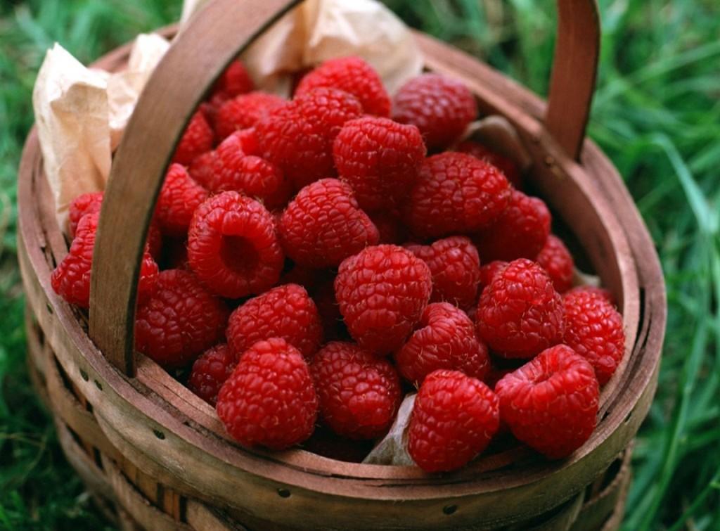 Raspberries wallpapers HD
