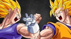 Dragon Ball Z Vegeta Widescreen