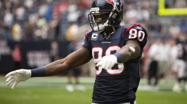 Andre Johnson High Definition