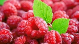 Raspberries Pics