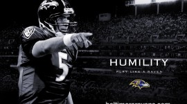 Joe Flacco Widescreen