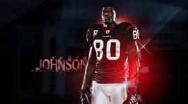 Andre Johnson Wallpaper