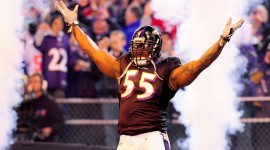 Terrell Suggs Pictures