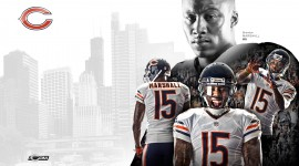 Brandon Marshall Wallpapers HQ