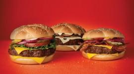 Burgers pic