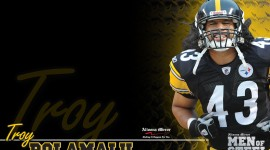 Troy Polamalu Images