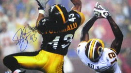 Troy Polamalu Pictures