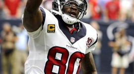 Andre Johnson pic