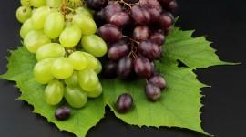 Grapes Pics