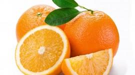 Oranges Photos