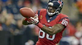 Andre Johnson High quality wallpapers