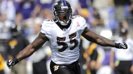 Terrell Suggs pic