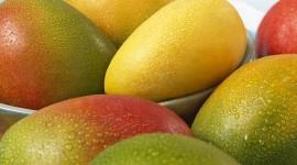 Mango Photos