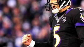 Joe Flacco Pictures