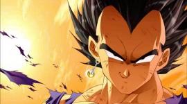 Dragon Ball Z Vegeta pic