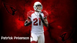 Patrick Peterson Photos
