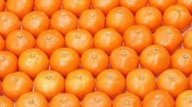 Oranges High Definition