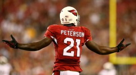 Patrick Peterson Images