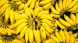 Bananas Images