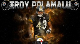 Troy Polamalu Free download