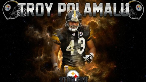 Troy Polamalu wallpapers high quality