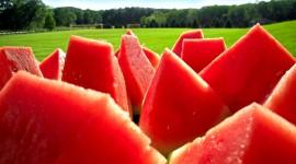 Watermelon HD