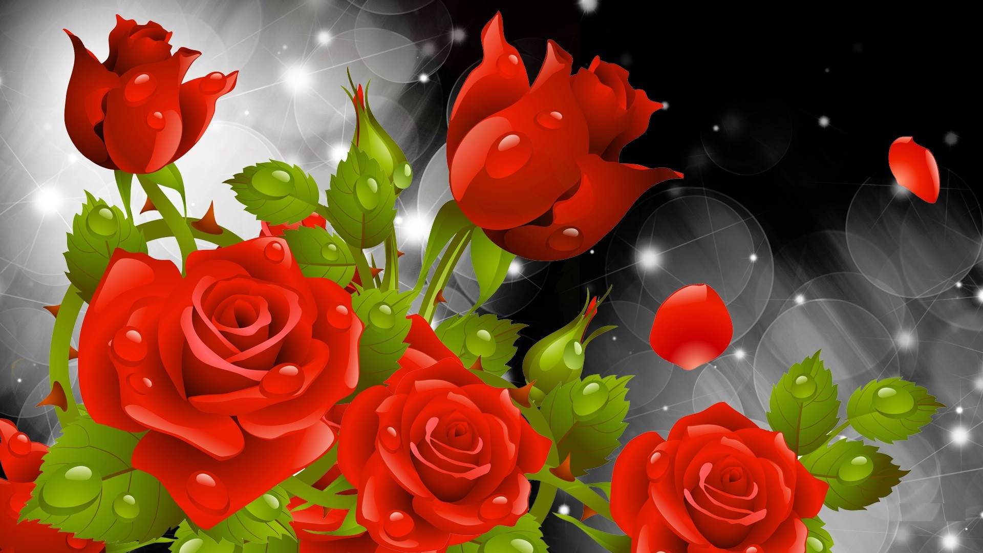 Red Rose Wallpapers High Quality Download Free