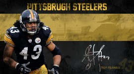 Troy Polamalu HD Wallpaper