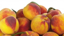 Peaches Photos