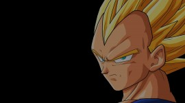 Dragon Ball Z Vegeta Pictures