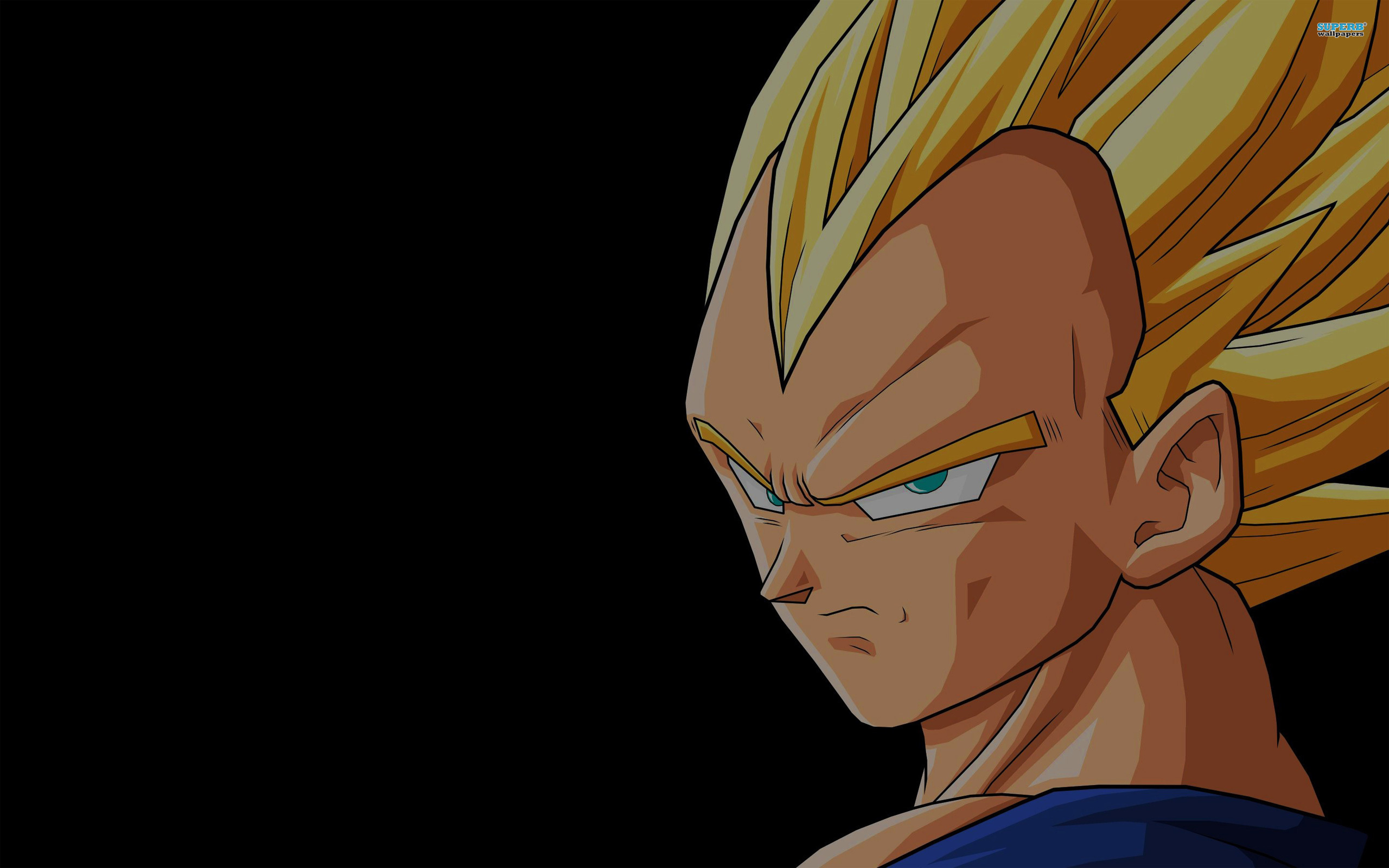 Dragon ball z vegeta wallpapers high quality download free - Images dragon ball z ...