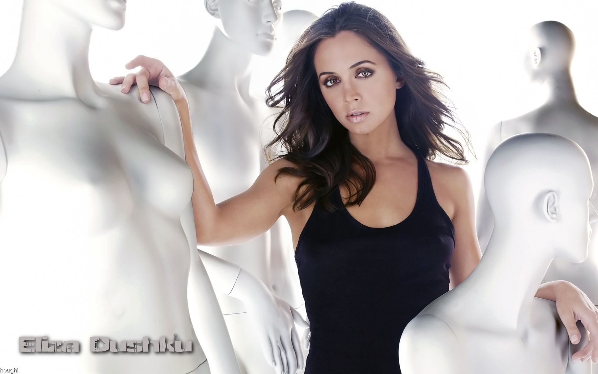 Eliza Dushku Wallpapers High Quality