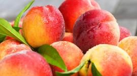 Peaches Pictures