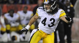 Troy Polamalu High Definition