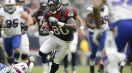 Andre Johnson Images