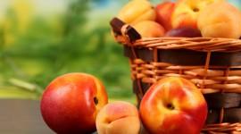 Peaches Images