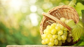 Grapes High Definition