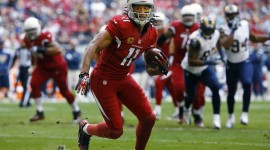 Larry Fitzgerald High quality wallpapers