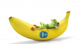 Bananas 4K